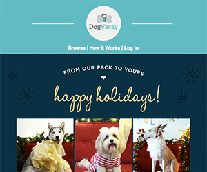 DogVacay email newsletter December 2014