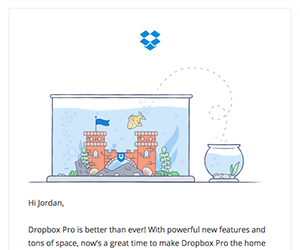 Dropbox email newsletter November 2014