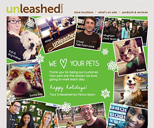 Unleashed email newsletter December 2014